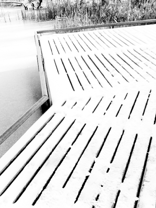 Winter Boardwalk