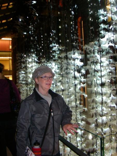 nuit blanche 2010 - Aurora (Philip Beesley), Royal Conservatory