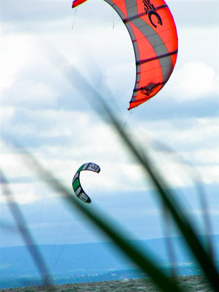 Fly on the wind . . .