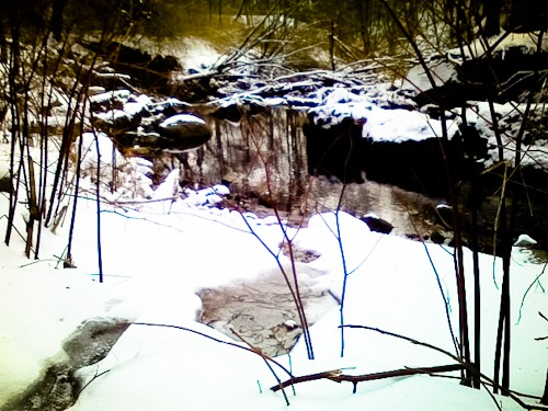 Reflecting winter